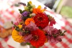 Wildflowers from Hanson Farm
